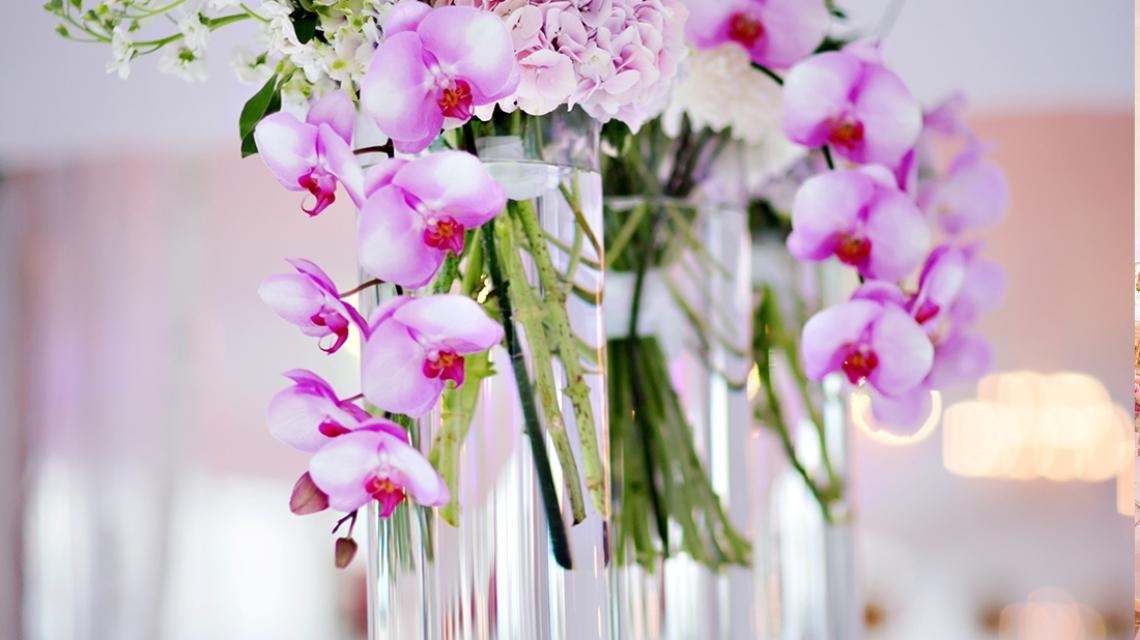 Shilinia & Jade – Showroom | Weddings