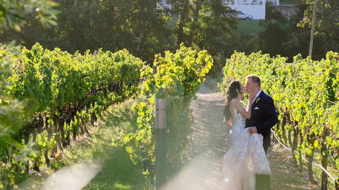 Christelle and Mick Lotter's Wedding at Holden Manz, Franschhoek, South Africa